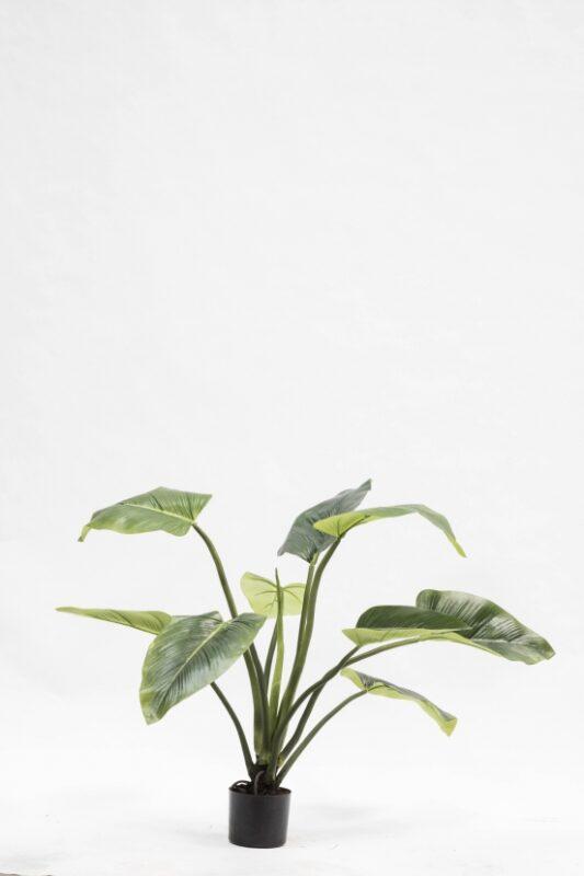 kunstplant silk-ka